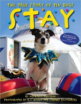 Stay: The True Story of Ten Dogs