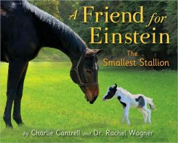 A Friend for Einstein: The Smallest Stallion